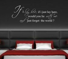 SNOW PATROL Wall Sticker Art Quote Decal removable vinyl FL
