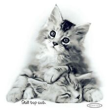 Still Top Cat   Kitten  Tshirt    Sizes/Colors