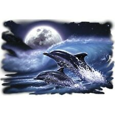 Moon Dolphins  Dolphin  Tshirt    Sizes/Colors