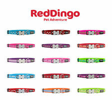 Red Dingo Patterned Dog Collars - Choice of Styles & Sizes