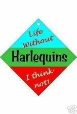 Harlequins Car / Window Sign or Slap-on magnets Free UK p/p