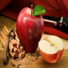 Apple Cinnamon Fragrance Oil Soap And Candle Making Supplies