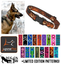 """Lupine Dog/Puppy Collar. 1"""" wide, for med to XL dogs. Lifetime Guarantee!"""