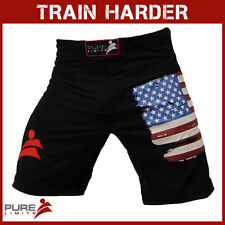 Pure Limits Mens CrossFit Training Shorts - Series B - No Split - US USA Flag