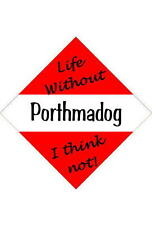Porthmadog Car/window signs / Personalised signs / flexible magnets