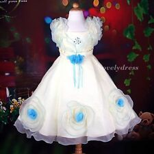 NEW Flower Girl Wedding Pageant Party Bridesmaid Dress Wear Set Blue SZ 4-9 Q370