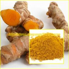 100% Pure TURMERIC ROOT Curcuma Longa Extract Powder Herbs Anti-oxidant, 1 - 5oz