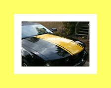 """2005 2006 2007 2008 09 Mustang 20"""" Wide HOOD Rally Stripe Stripes Decal Graphics"""