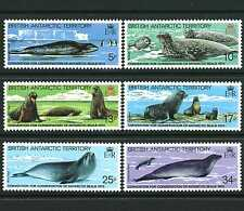 BRITISH ANTARCTIC TERRITORY 1972-2003 CHOOSE FROM VARIOUS UNMOUNTED MINT SETS
