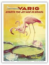 Brazil Pink Flamingo Water Lily Vintage Airline Travel Art Poster Print