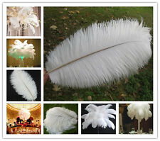 Wholesale 10/50/100pcs White 6-24inches/15-60cm High Quality Ostrich feathers