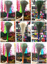 Wholesale 20/50/100 PCS beautiful 28-32 inches / 70-80 cm peacock feather eye