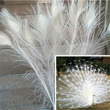 Wholesale!10/20/50/500 PCS peacock feathers eye 28-32 inches / 75-80 cm Choose