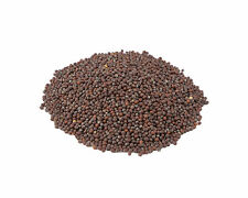 Brown Whole Mustard Seed  Premium Herb & Spices 1 to 10 Pounds Big Bulk $aving$