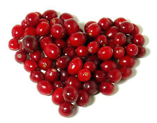 Cranberry Scented Fragrance Oil -U Pick Size Great for Soap/Candle making