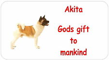 Akita - glossy labels/stickers - various designs / personalised