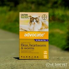 Advocate Purple for Large Cats (Over 4kg)