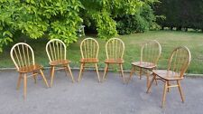 Ercol Windsor dining chairs solid ash and elm set of 6