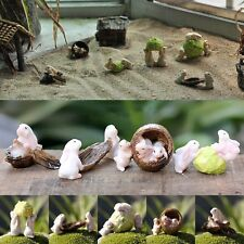 Bunny Rabbit Miniature Dollhouse Fairy Garden Bunnies Walnut Cabbage Seed Pot