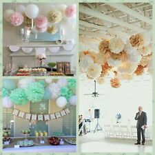 "6 PCS *10"" Tissue Paper Pom Poms  Flower Ball  Wedding/Party  Hanging Decor"