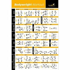 Bodyweight Exercise Poster - Total Body Workout - Personal Trainer Fitness - Gym