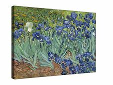 Vincent Van Gogh Irises  ~  Canvas Wall Art Picture Print Framed + Sizes