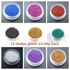 12 Colour Fine Dust Glitter Nail Art Face Body Eye Shadow Craft Paing Iridescent