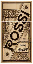 Photo Print Vintage Poster: Stage Theatre Flyer Rossi 01