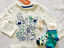 NWT Gymboree Baby Girls HAPPY BLUEBIRD Top w 2 Pr Socks 12-18 18-24 Months