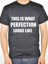 THIS IS WHAT PERFECTION LOOKS LIKE - Humorous / Novelty Themed Mens T-Shirt