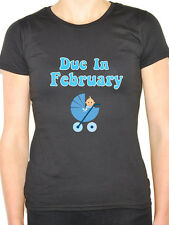 DUE IN FEBRUARY - Baby Boy / Pregnant / Pregnancy / Blue Themed Womens T-Shirt