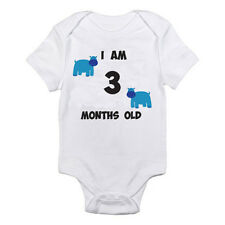 I AM 3 MONTHS OLD - Age / Three / Birth / Hippopotamus Themed Baby Grow / Suit
