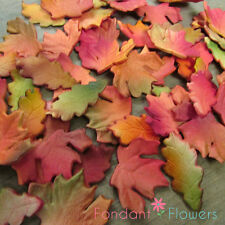 Gumpaste Autumn Fall Fondant Maple & Oak Leaves Acorns Cake Decoration Toppers