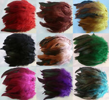 Wholesale 50/100pcs beautiful the rooster tail feather 6-8inch / 14-18cm
