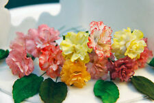 6 Edible Carnation Sugar Flowers for any Occasion