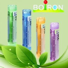 BOIRON HOMEOPATHY DIFFERENT REMEDIES