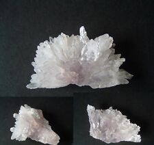 Quality Natural Shell Rose Amethyst crystal cluster mineral specimen collectable