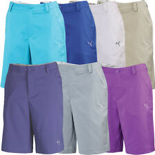 Puma Solid Tech Shorts 565517 Mens Flat Front Pick Size & Color Lowest Price NEW