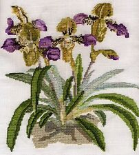 Slipper orchid or Paphilopedilum counted cross stitch kit or chart 14s aida