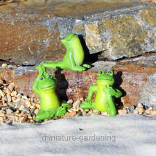 Miniature Fairy Garden Yoga Frogs, Set of 3, Options