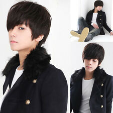 Fashion Boy Wig Short Straight Hair Cosplay Korean Style Handsome Men Full Wigs