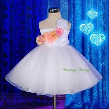 Colourful Roses One-Shoulder Tube Pretty Flower Girl Wedding Dress Size 2-7 #273