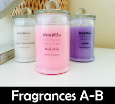 Scented Soy Wax Candle (Scents A-E) 100% Soy Wax - 30hr Burn Time - Fiesta Jar