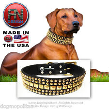 RN Design :: Metal Studded Dog Collar :: LEATHER :: CUSTOM USA HANDMADE
