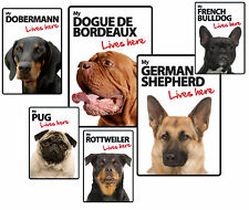 Dog Breed Lives Here Plastic Advisory Signs