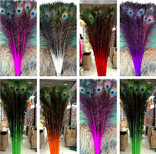 10-500 Pcs Natural peacock feathers eye 28-36inches / 75-80 cm 7 Colors Choose