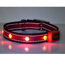 Extra Strong LED Lighted Nylon Dog Pet Puppy Safety Night Collar For Large Dog R