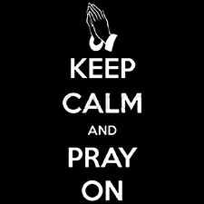 Keep Calm And Pray T-Shirt All Sizes & Colors # 616