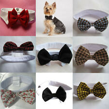 Fashion Adorable Dog Cat Pet Puppy Kitten Toy Bow Tie Necktie Collar Clothes New