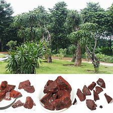 5oz Dragon's Blood Resin Incense 5oz 100% Natural Wild Harvested w/charcoal w @